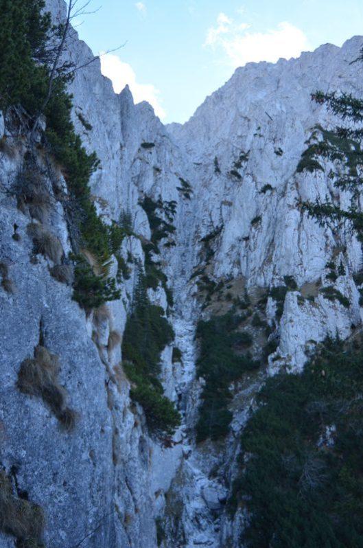 scara padina calinet piatra craiului