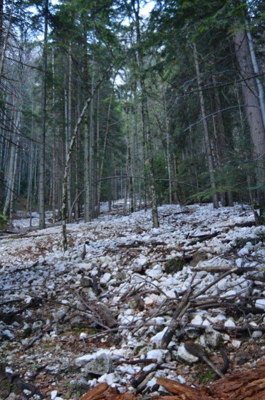 traseu izvorul orlovski piatra craiului