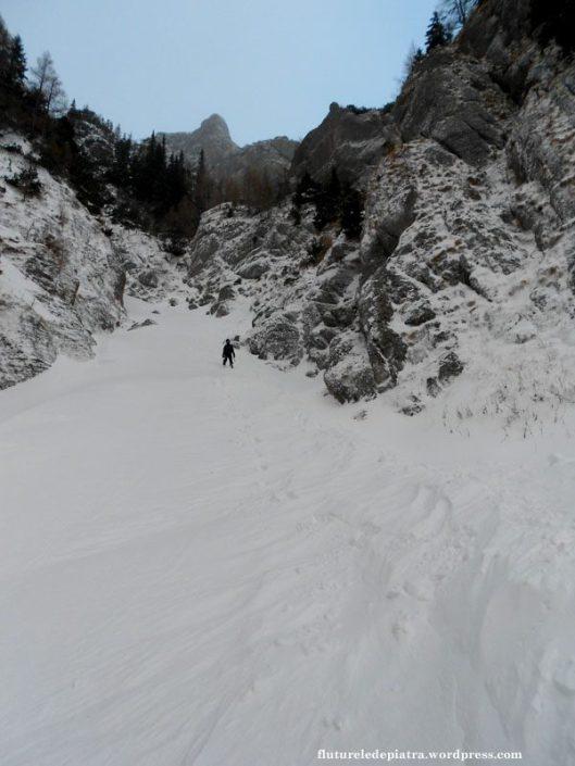 valea costilei iarna