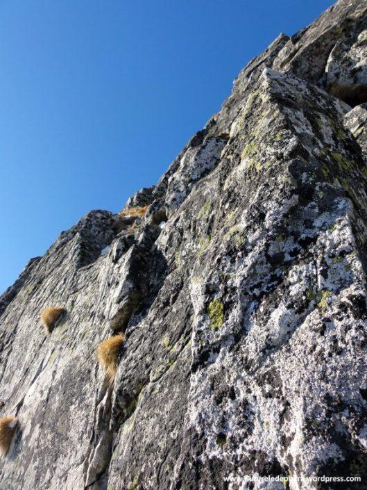 creasta vulturilor, alpinism bucura 2, retezat