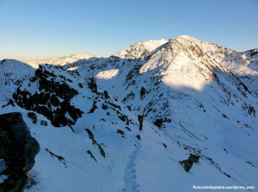 curmatura bucurei iarna, muntii retezat