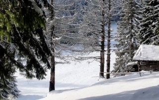 Bucegi Mountains, Carpathians