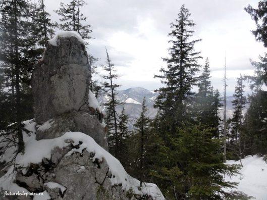 winter landscape piatra craiului