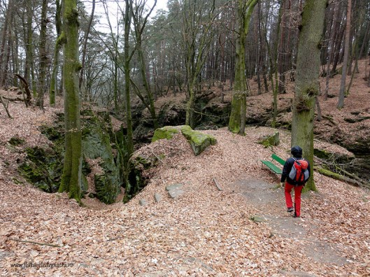 berdorf sandstone canyon forests