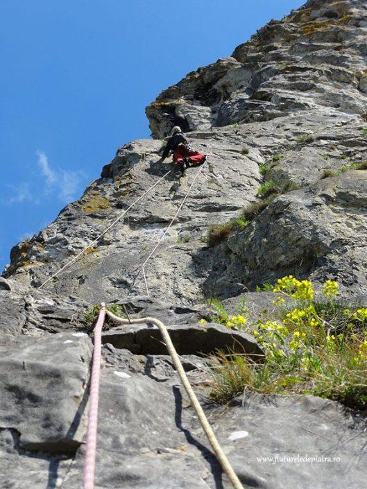 climbing multipitch freyr, belgium