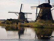 didier keus_Kinderdijk park photo