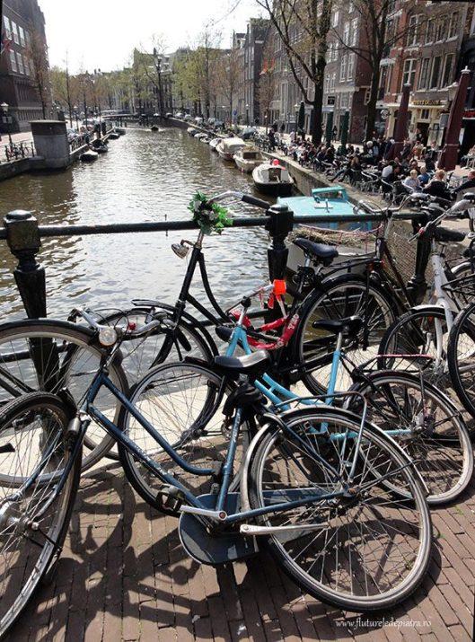portul amsterda biciclete olanda