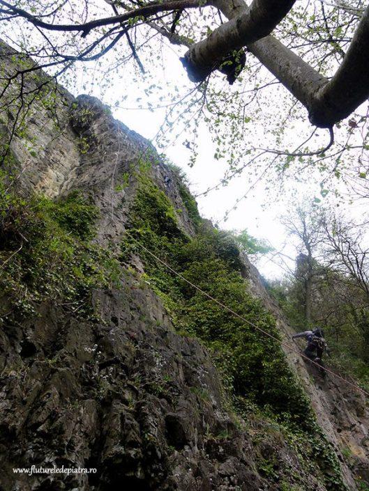 climbing Beez, Belgium