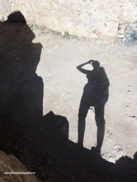 shadow of a traveller