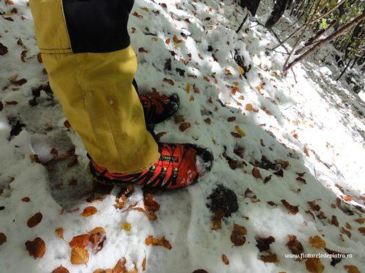 pantofi sport de zapada
