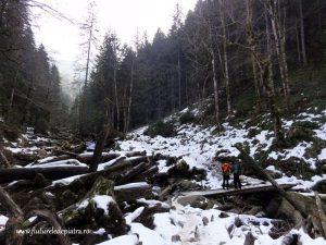 traseu iarna muntii fagaras