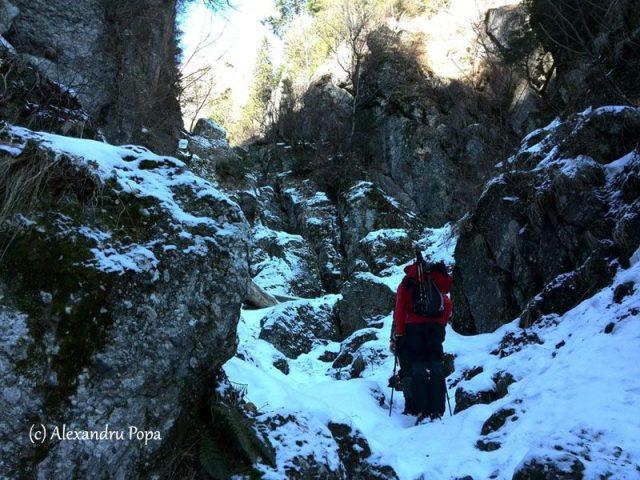 vale de abrupt iarna muntii bucegi