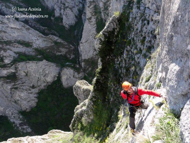 alpinism cheile turzii, peretele urias