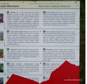 legenda si specific rezervatie muntii macin