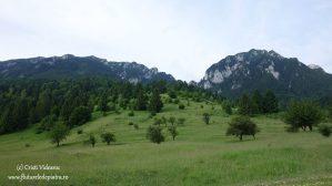 traseu turistic muntii carpati, romania