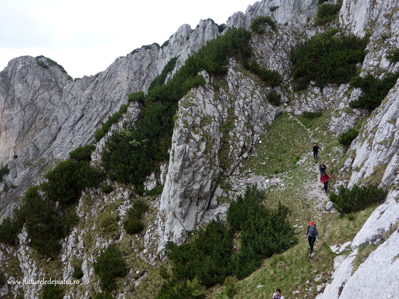trekking piatra craiului