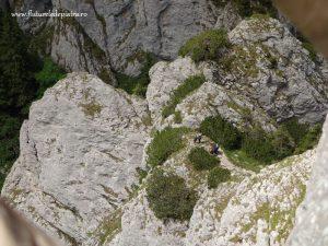 traseu turistic Piatra Craiului, refugiul Diana