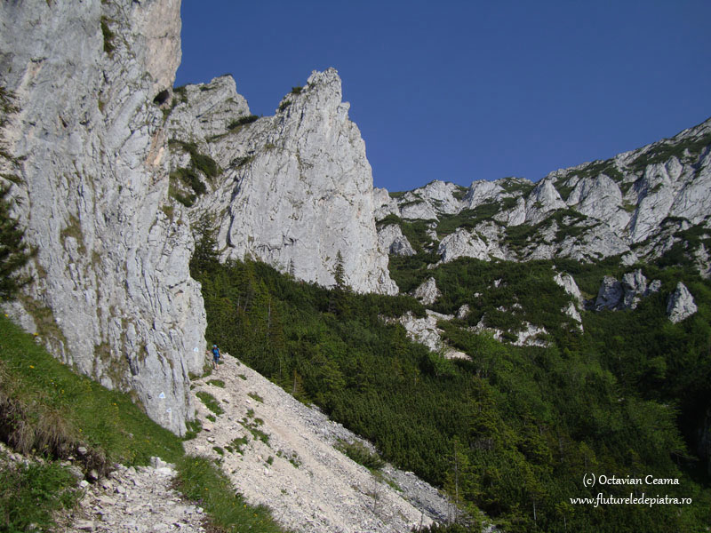 traseu turistic vara masivul piatra craiului
