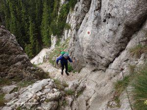 urcare in creasta pietrei craiului