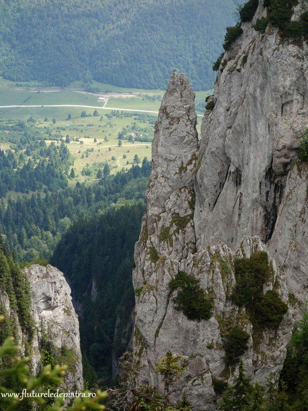 priveliste piatra craiului vara