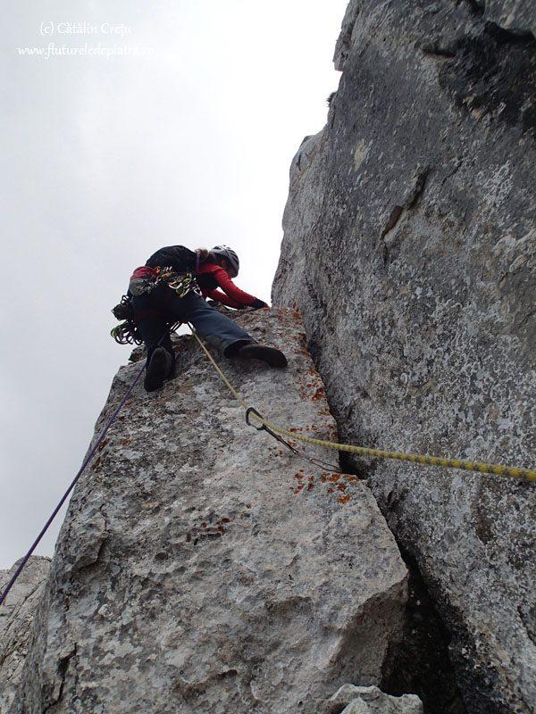 alpinism piatra craiului, padina lui calinet