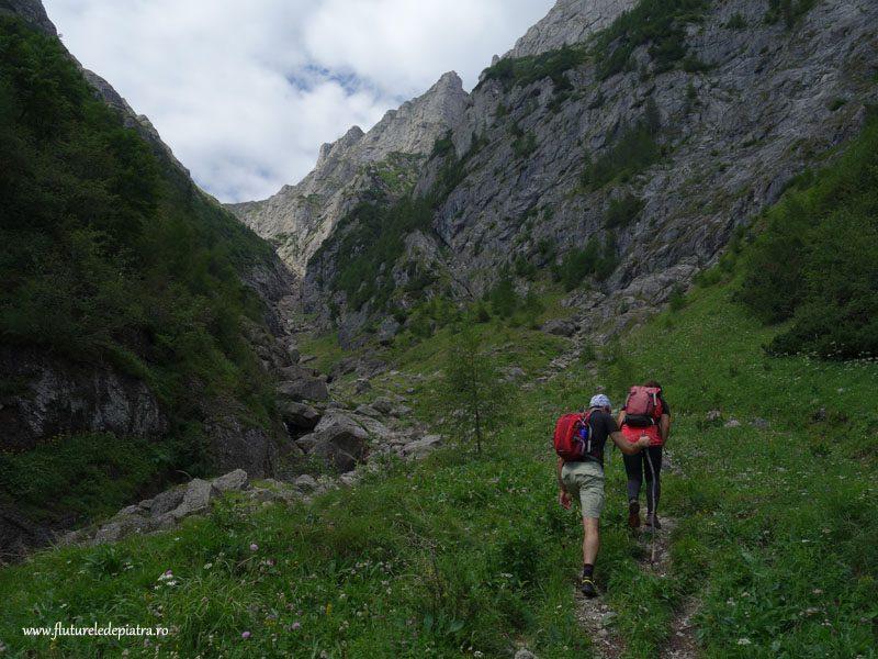 plimbare valea alba vara_muntii bucegi (10)