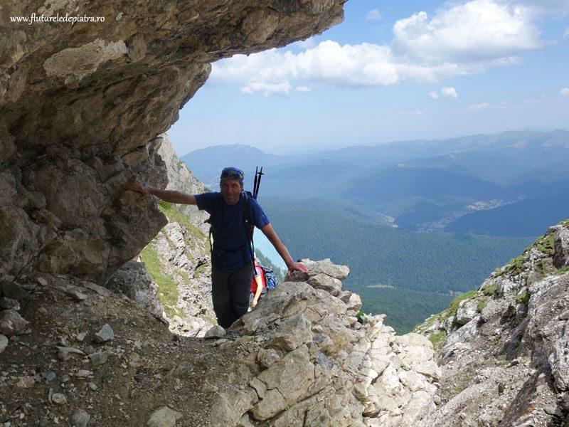 plimbare valea alba vara_muntii bucegi (32)
