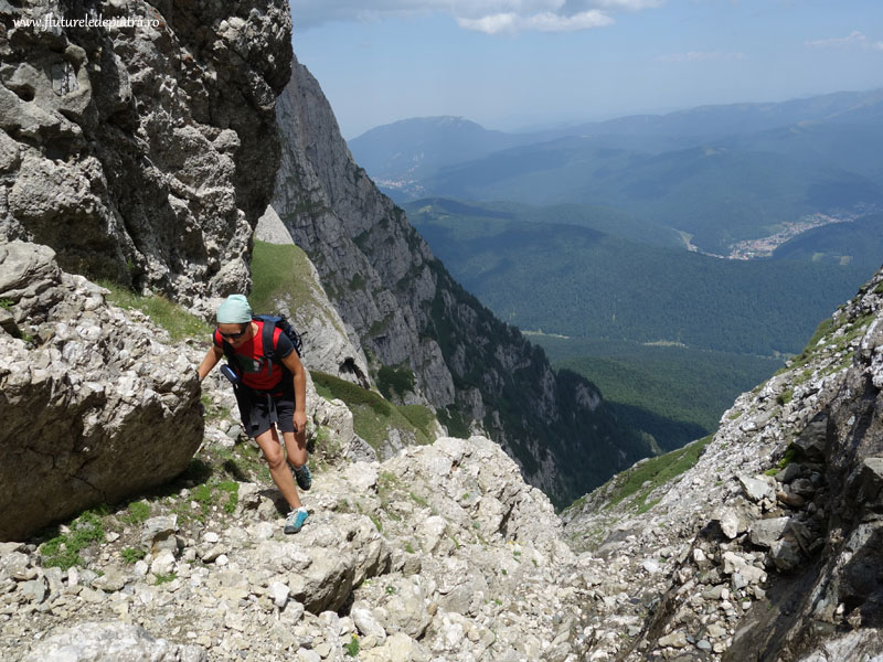 plimbare valea alba vara_muntii bucegi (33)