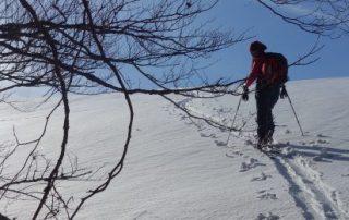 schi tura_muntii baiului