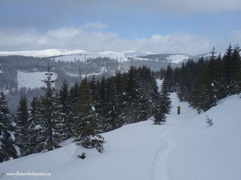 ski tura transalpina, voineasa