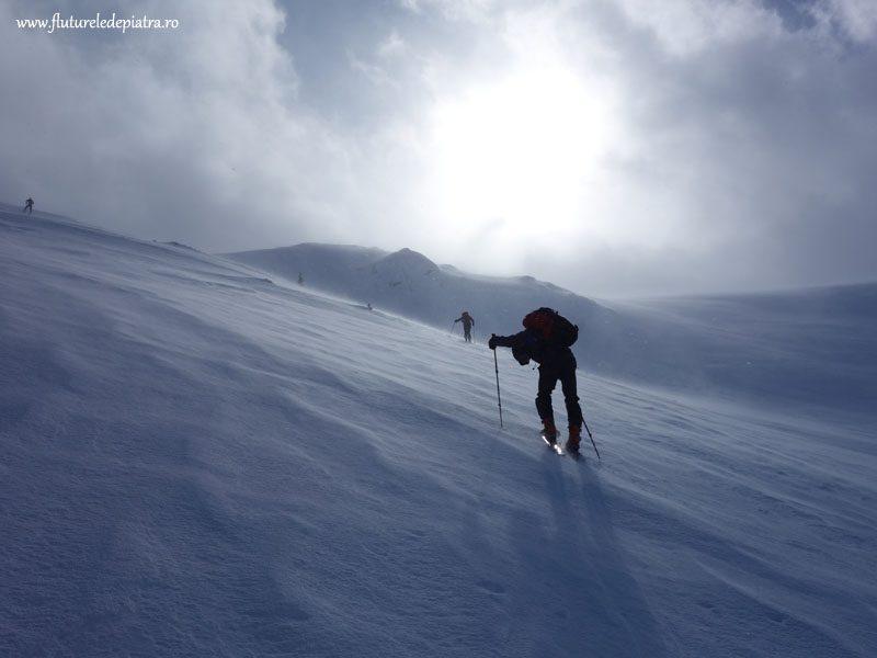 urcare pe schiuri de tură