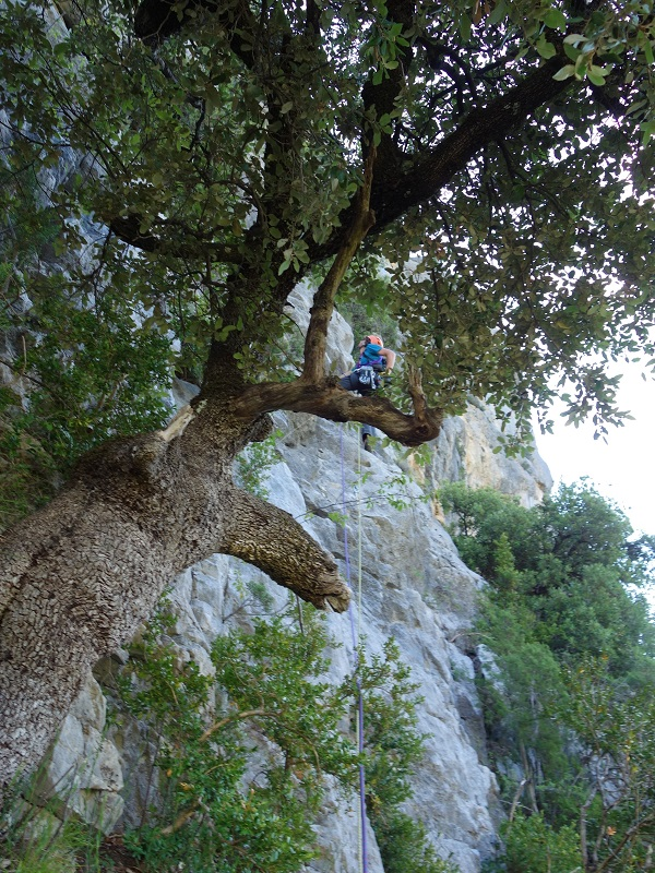 route free tibet_verdon_enchante (2)