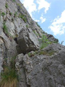alpinism asigurari mobile vratsa