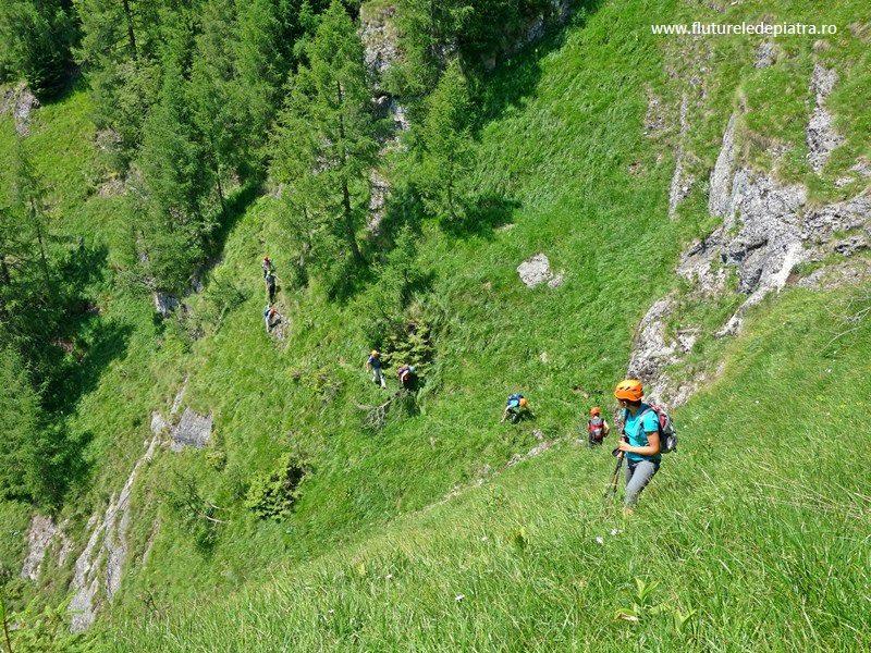 fețe expuse, cu iarbă, pe Brâul de Jos al Morarului, nemarcat munții bucegi vara