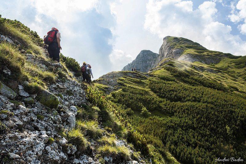 urcare spre Acele Morarului pe Creasta Ascuțită, Munții Bucegi