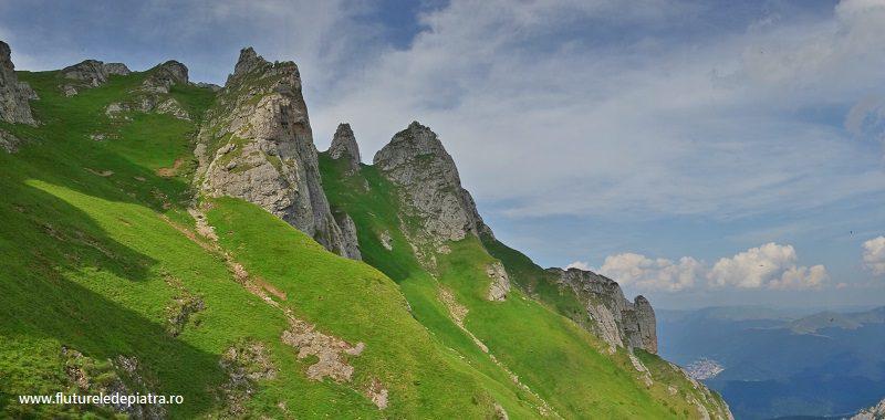 Acele Morarului văzute de sub ele, fața sudică, munții bucegi