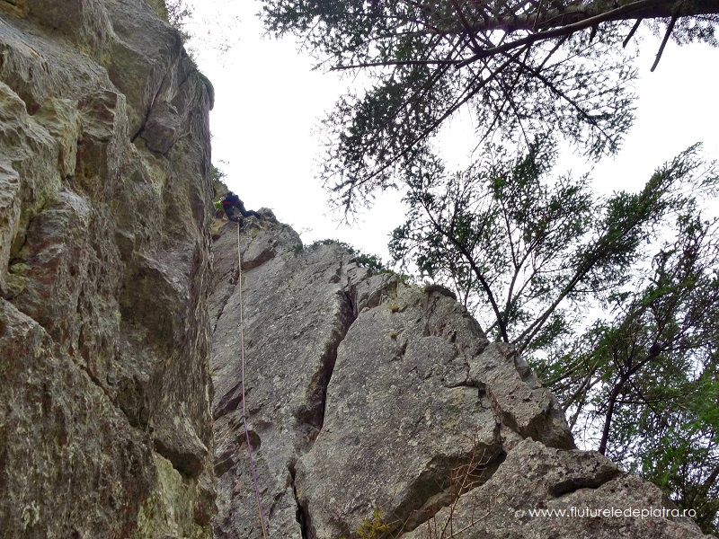 cățărare Buila VÂnturarița, traseul diedrul cu brazi, alpinism romania