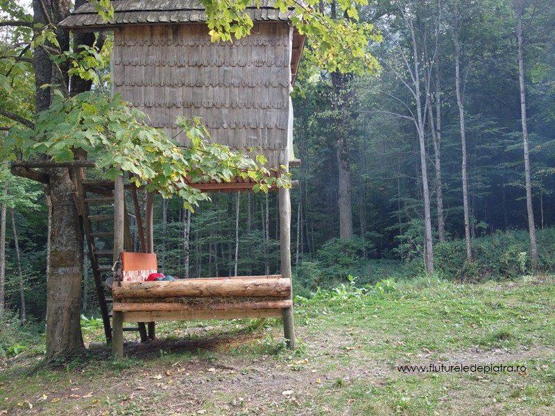pat în aer liber, printre copaci, natura de la cabana cheia, buila vanturarita