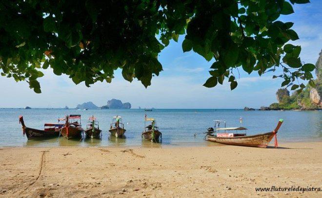 Călătorie în Thailanda, pregătiri și visat