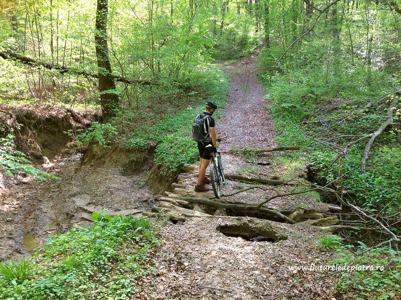 trecere pe poduri uitate de lume, traseu bicicletă xc race mountainbike buzau