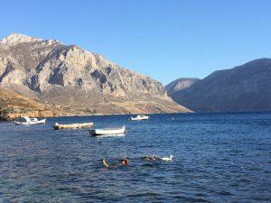 Nula vrând să se împrietenească cu rațele. Sentimentul nu a fost reciproc. Plaja Piraților Kalymnos, Grecia