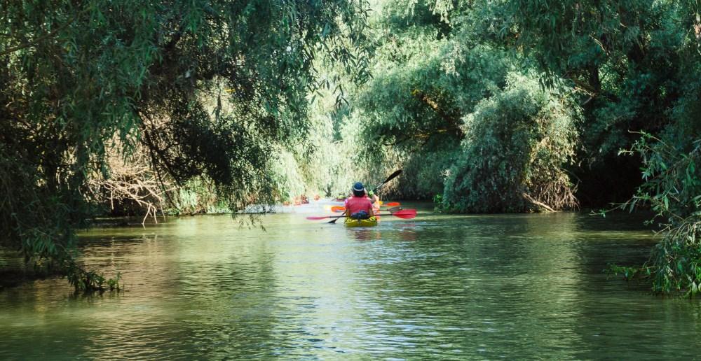 în împărăția apelor din Delta Dunării cu caiacul. De pe Dunărea Veche