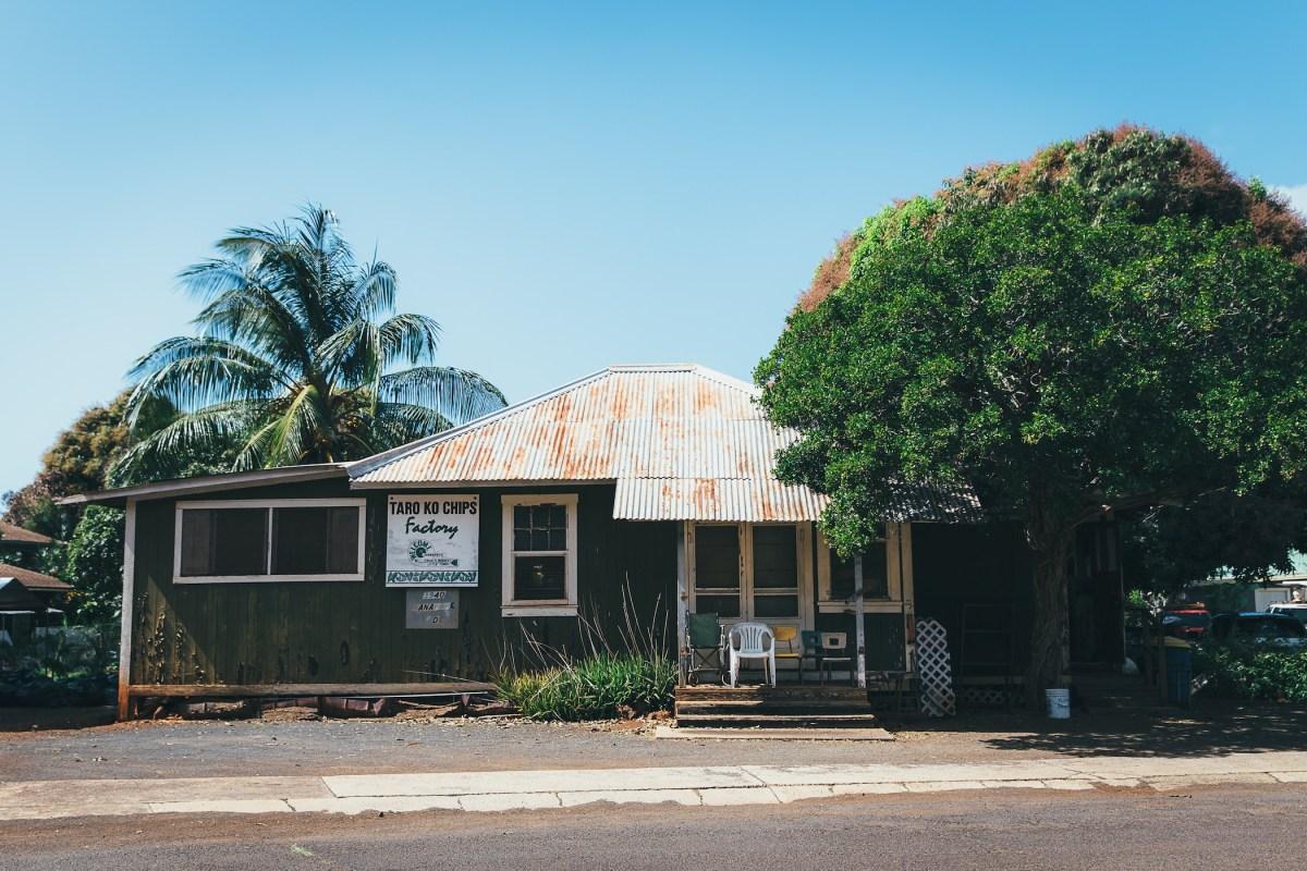 taro ko kauai flux hawaii