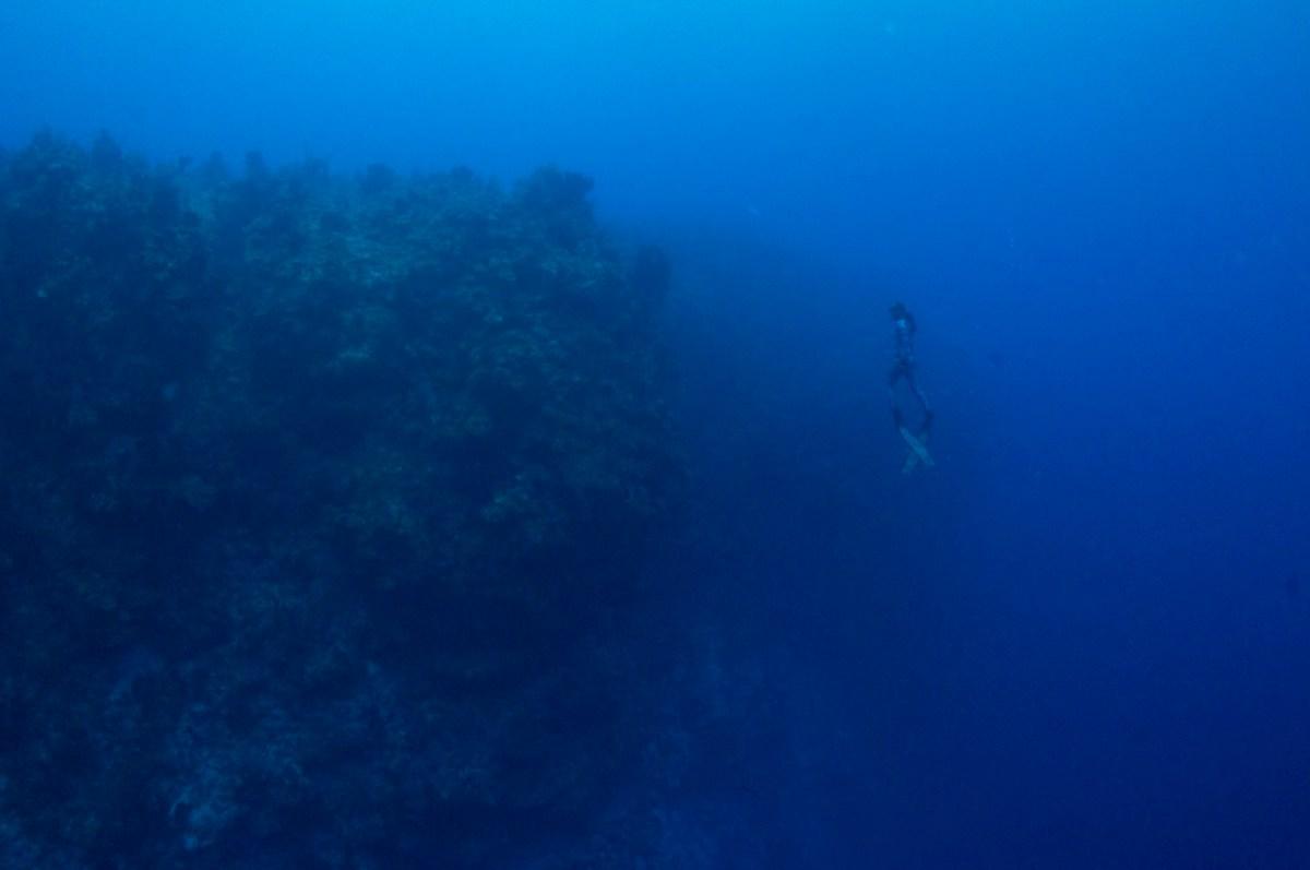 Kimi Werner freediving FLUX Hawaii the sea