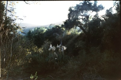"""Santa Monica Mountains"", 1996, Santa Monica, Landscape/Light studies series, Ca, C–print"