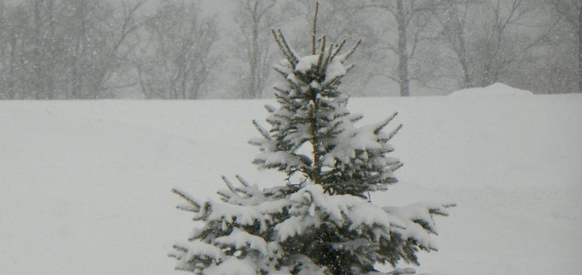 finger lakes weather lake effect snow accumulations