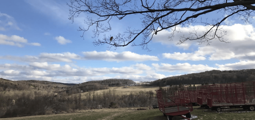 finger lakes weather forecast temperature warm spring