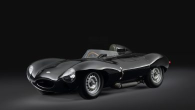 Photo of First Production Jaguar D-Type and 15th E-Type join Concours of Elegance.