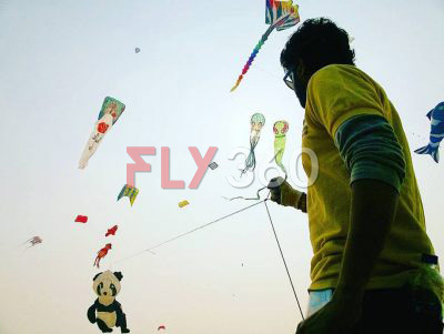 Single line kites | national-international-kite-flying-festival-shows-Ankit-Bhadane-Fly360-Team-Member | FLY360