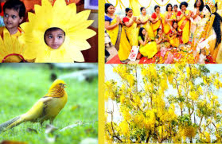 basant panchami traditions